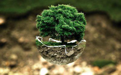 Działalność kontrolna Inspekcji Ochrony Środowiska